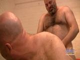 Osos maduros dándose placer - Pornostars